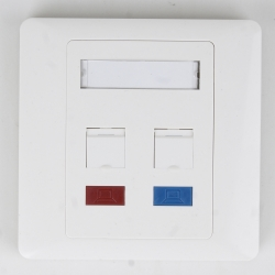 2 Ports Wall Plate
