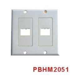 HDMI Wall Plate
